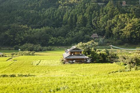 神山町の風景。